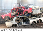 Купить «Автомобили, сданные в металлолом по программе утилизации», фото № 2429593, снято 22 марта 2011 г. (c) Михаил Коханчиков / Фотобанк Лори