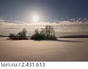 Островок в поле. Стоковое фото, фотограф Владимир Любимов / Фотобанк Лори