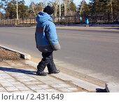 Маленький мальчик переходит улицу по пешеходному переходу. Стоковое фото, фотограф Наталья Иванова / Фотобанк Лори