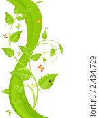 Купить «Зеленые ветви с листьями», иллюстрация № 2434729 (c) Костенюкова Наталия / Фотобанк Лори
