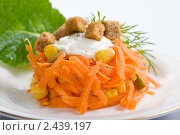 Купить «Салат из моркови с майонезом», фото № 2439197, снято 31 марта 2011 г. (c) Svetlana Mihailova / Фотобанк Лори