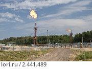 Сжигание попутного газа. Стоковое фото, фотограф Rumo / Фотобанк Лори
