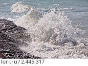 Купить «Набегающая штормовая волна», фото № 2445317, снято 8 сентября 2010 г. (c) Владимир Сергеев / Фотобанк Лори