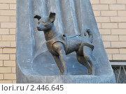 Купить «Памятник установлен в честь 50-летия второго искусственного спутника земли с собакой Лайкой на борту. Москва», эксклюзивное фото № 2446645, снято 4 апреля 2011 г. (c) stargal / Фотобанк Лори