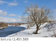 Холодная весна. Стоковое фото, фотограф Алла Вовнянко / Фотобанк Лори