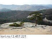 Парк Стоун Маунтин, Северная Каролина. Стоковое фото, фотограф Дмитрий Поляков / Фотобанк Лори