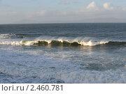 Купить «Волна», фото № 2460781, снято 16 января 2011 г. (c) Татьяна Кахилл / Фотобанк Лори