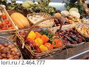 Купить «Овощи», фото № 2464777, снято 24 марта 2011 г. (c) Федор Кондратенко / Фотобанк Лори