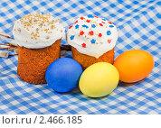 Купить «Пасхальные куличи и крашеные яйца», фото № 2466185, снято 25 апреля 2010 г. (c) ElenArt / Фотобанк Лори