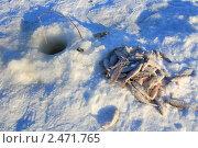 Купить «Кучка рыбы у лунки», эксклюзивное фото № 2471765, снято 15 января 2011 г. (c) Анатолий Матвейчук / Фотобанк Лори