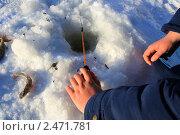 Купить «Обветренные руки держат зимнюю удочку в черной лунке», эксклюзивное фото № 2471781, снято 15 января 2011 г. (c) Анатолий Матвейчук / Фотобанк Лори