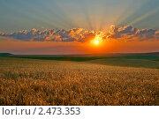 Купить «Красивый закат», фото № 2473353, снято 2 августа 2008 г. (c) Величко Микола / Фотобанк Лори