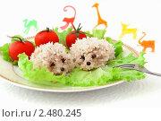 Купить «Ежики - рисовые тефтели на тарелке на белом фоне», фото № 2480245, снято 6 апреля 2011 г. (c) Светлана Зарецкая / Фотобанк Лори