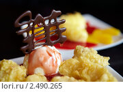 Купить «Традиционный японский десерт фрукты в темпуре и мороженое», фото № 2490265, снято 8 марта 2010 г. (c) Ольга Красавина / Фотобанк Лори
