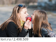 Купить «Разделить поровну. Девушка и девочка подросток кусают яблоко», эксклюзивное фото № 2498509, снято 22 апреля 2011 г. (c) Игорь Низов / Фотобанк Лори