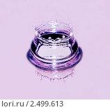 Купить «Всплеск воды на гладкой поверхности», фото № 2499613, снято 17 сентября 2019 г. (c) Ласточкин Евгений / Фотобанк Лори