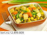 Купить «Сырный салат с кукурузой и зеленым горошком», фото № 2499809, снято 26 апреля 2011 г. (c) Ольга Иванова / Фотобанк Лори