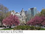 Купить «Нью-Йорк. Батарейный парк», фото № 2512993, снято 26 апреля 2011 г. (c) Юлия Козинец / Фотобанк Лори