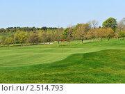 Купить «Вид на поле для игры в гольф», фото № 2514793, снято 18 апреля 2011 г. (c) Татьяна Кахилл / Фотобанк Лори