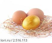 Купить «Золотое яичко, лежащее рядом с двумя простыми яйцами на соломе», фото № 2516113, снято 22 апреля 2009 г. (c) Елена Завитаева / Фотобанк Лори
