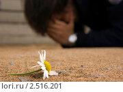 Разбитые отношения: сорванная ромашка на переднем плане и плачущий человек на заднем. Стоковое фото, фотограф Dmitry S. Marshavin / Фотобанк Лори