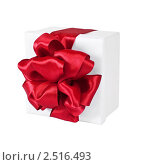 Купить «Подарок», фото № 2516493, снято 7 января 2011 г. (c) Анастасия Мелешкина / Фотобанк Лори