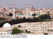 Тунис (2011 год). Стоковое фото, фотограф Некрасов Андрей / Фотобанк Лори