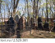 Купить «Старинное кладбище при Донском монастыре. Москва», фото № 2529381, снято 2 мая 2011 г. (c) Наталья Волкова / Фотобанк Лори
