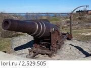 Купить «Артиллерийское орудие в морской крепости Хельсинки. Финляндия», эксклюзивное фото № 2529505, снято 8 мая 2011 г. (c) ФЕДЛОГ / Фотобанк Лори