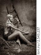 Купить «Девушка на сене», фото № 2543237, снято 3 мая 2011 г. (c) Okssi / Фотобанк Лори