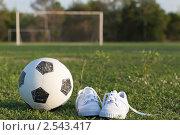 Купить «Футбольный мяч и детские белые кеды на футбольном поле», фото № 2543417, снято 20 мая 2011 г. (c) Ирина Смирнова / Фотобанк Лори