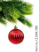 Купить «Новогодний шар на елке», фото № 2544189, снято 16 января 2019 г. (c) Elnur / Фотобанк Лори