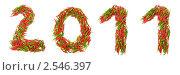 Купить «Число 2011, выложенное с помощью стручков перца», фото № 2546397, снято 29 мая 2010 г. (c) Elnur / Фотобанк Лори