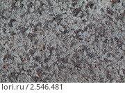 Серая бетонная поверхность с мелкими песчинками. Стоковое фото, фотограф Олег Кириллов / Фотобанк Лори
