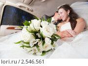 Купить «Молодожёны в автомобиле», фото № 2546561, снято 24 июля 2010 г. (c) Фурсов Алексей / Фотобанк Лори
