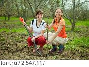 Купить «Счастливые женщины занимаются посадкой плодовых деревьев», фото № 2547117, снято 8 мая 2011 г. (c) Яков Филимонов / Фотобанк Лори