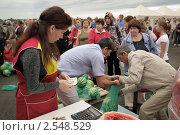 Купить «Продажа арбузов на фермерском рынке», фото № 2548529, снято 18 августа 2010 г. (c) Vladimir Kolobov / Фотобанк Лори
