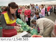Купить «Продажа арбузов на фермерском рынке», фото № 2548565, снято 18 августа 2010 г. (c) Vladimir Kolobov / Фотобанк Лори