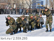 Купить «Бойцы спецназа МВД», эксклюзивное фото № 2559293, снято 18 марта 2011 г. (c) Free Wind / Фотобанк Лори