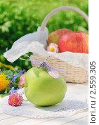 Купить «Летний натюрморт - зеленое яблоко со стрекозой и цветами на белом столе в саду», фото № 2559305, снято 22 мая 2011 г. (c) Светлана Зарецкая / Фотобанк Лори