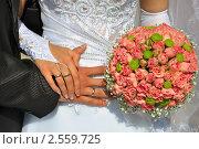 Купить «Руки со свадебными кольцами», фото № 2559725, снято 5 июня 2010 г. (c) Евгений Солдатов / Фотобанк Лори
