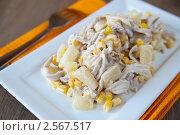Купить «Мясной салат с курицей», фото № 2567517, снято 21 апреля 2011 г. (c) Анна Лурье / Фотобанк Лори