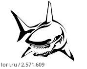 Акула. Стоковая иллюстрация, иллюстратор Игорь Бахтин / Фотобанк Лори