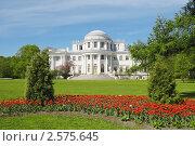 Купить «Елагиноостровский дворец, Санкт-Петербург», фото № 2575645, снято 19 мая 2010 г. (c) Галина Ермолаева / Фотобанк Лори
