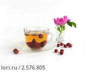 Купить «Чай с шиповником», фото № 2576805, снято 1 июня 2010 г. (c) Елена Завитаева / Фотобанк Лори