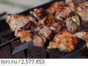 Купить «Шашлык», эксклюзивное фото № 2577853, снято 4 июня 2011 г. (c) Яна Королёва / Фотобанк Лори