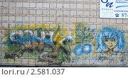 Рисунок на стене жилого дома. Стоковое фото, фотограф Кашкарева Светлана / Фотобанк Лори