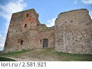 Старый замок в Латвии (2011 год). Стоковое фото, фотограф Владимир Одегов / Фотобанк Лори