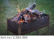 Купить «Горящие поленья на мангале. Открытый огонь на фоне лужайки.», фото № 2583369, снято 5 мая 2011 г. (c) Евгений Мареев / Фотобанк Лори