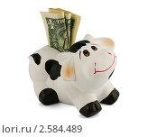 Копилка с деньгами. Стоковое фото, фотограф Михаил Голубев / Фотобанк Лори